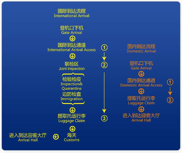 上海浦东机场t1-t2号航站楼国际和国内航班下机流程图